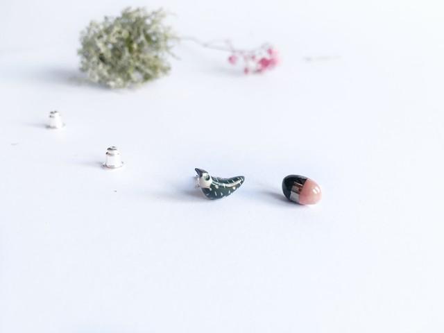 Samaninis paukštukas ir jo rožinis kiaušinukas